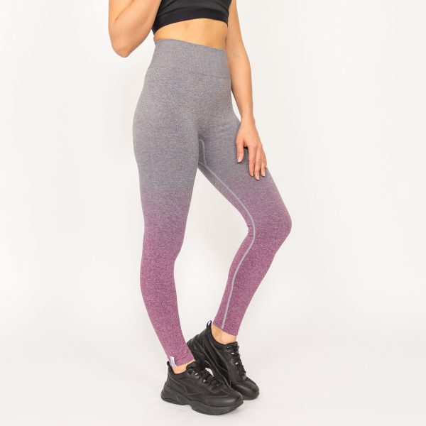 PUPPETRY High Waist Seamless Ombre Leggings